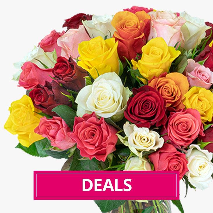 Blumen Angebote